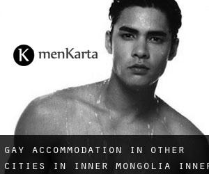 Gay Accommodation in Other Cities in Inner Mongolia (Inner Mongolia)