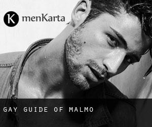 Gay Guide of Malmö