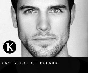 Gay guide of Poland