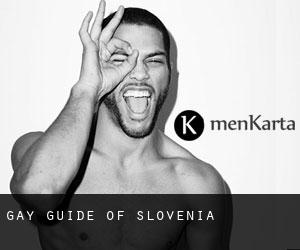 Gay Guide of Slovenia