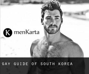 Gay guide of South Korea
