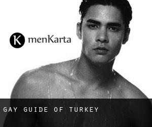 Gay guide of Turkey