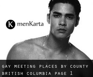 Gay Meeting Places by County (British Columbia) - page 1